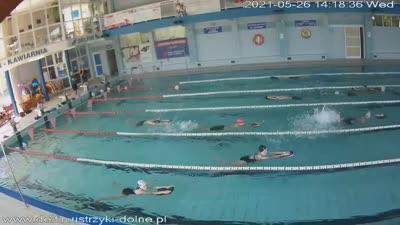 Kamera na żywo - Pływalnia Delfin